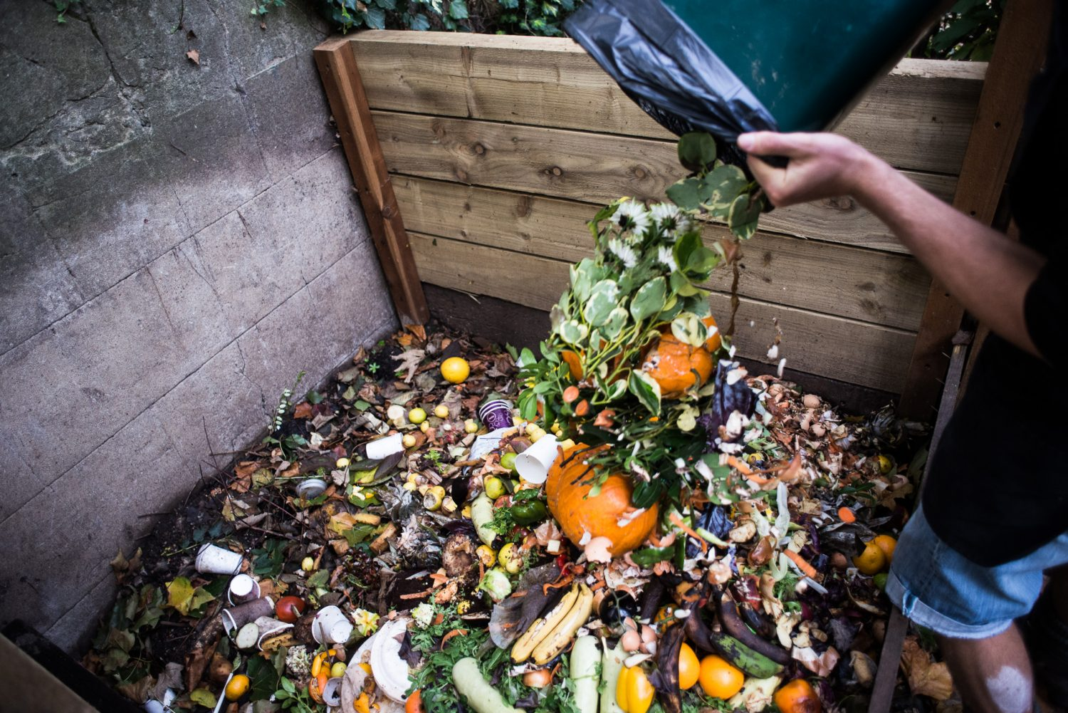 Food Waste in the UK - DOcumentary Photography by Chris King