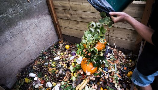 Who is responsible for household food waste?