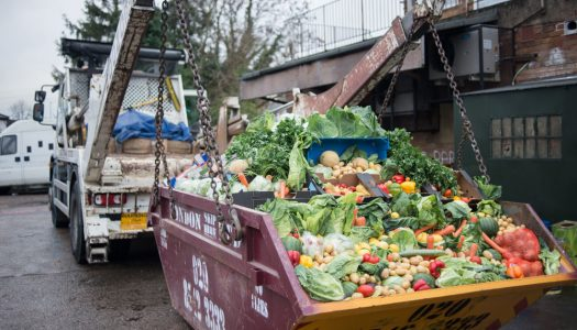 Stop the Rot – a campaign for a fairer food system