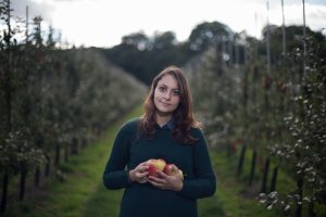 Gleaning Co-ordinator for Kent picking apples on a farm near Canterbury - Reducing the amount of edible food going to waste