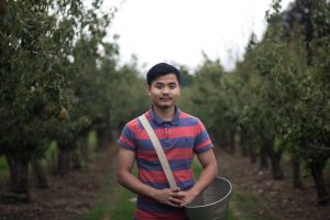 Gleaner - Volunteering for the Gleaning Network, part of Feedback Global