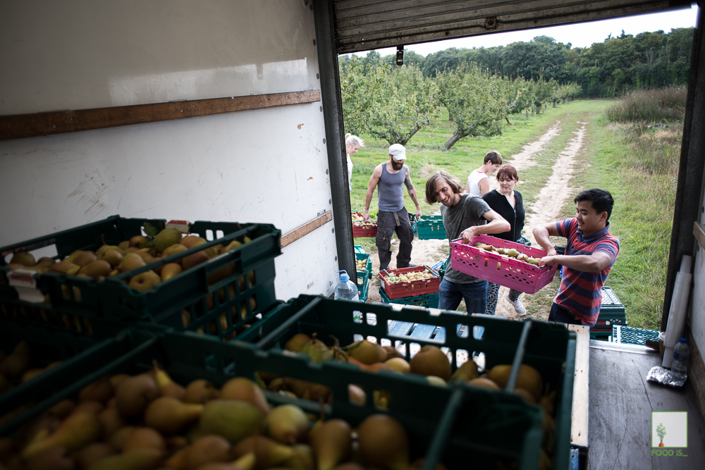 Chris King Photography - Documenting Food Waste - The Gleaning Network